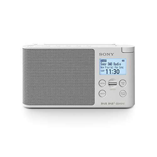 Sony XDR-S41D Digitalradio (DAB+, FM, RDS, Wecker)